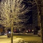 Иней - ночной Северодвинск