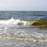 Волна - белое море