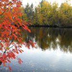 Осенняя р. Ширшема