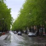 После дождя. (ул. Ленина)
