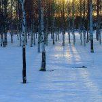 Длинные тени весеннего солнца
