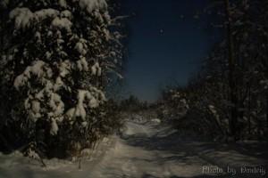 Пригород - ночной Северодвинск