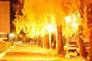 Аллея - ночной Северодвинск