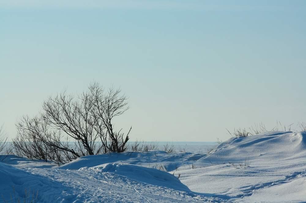 Дюны беломорского побережья