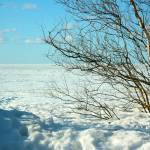 Белое море - зима 2015