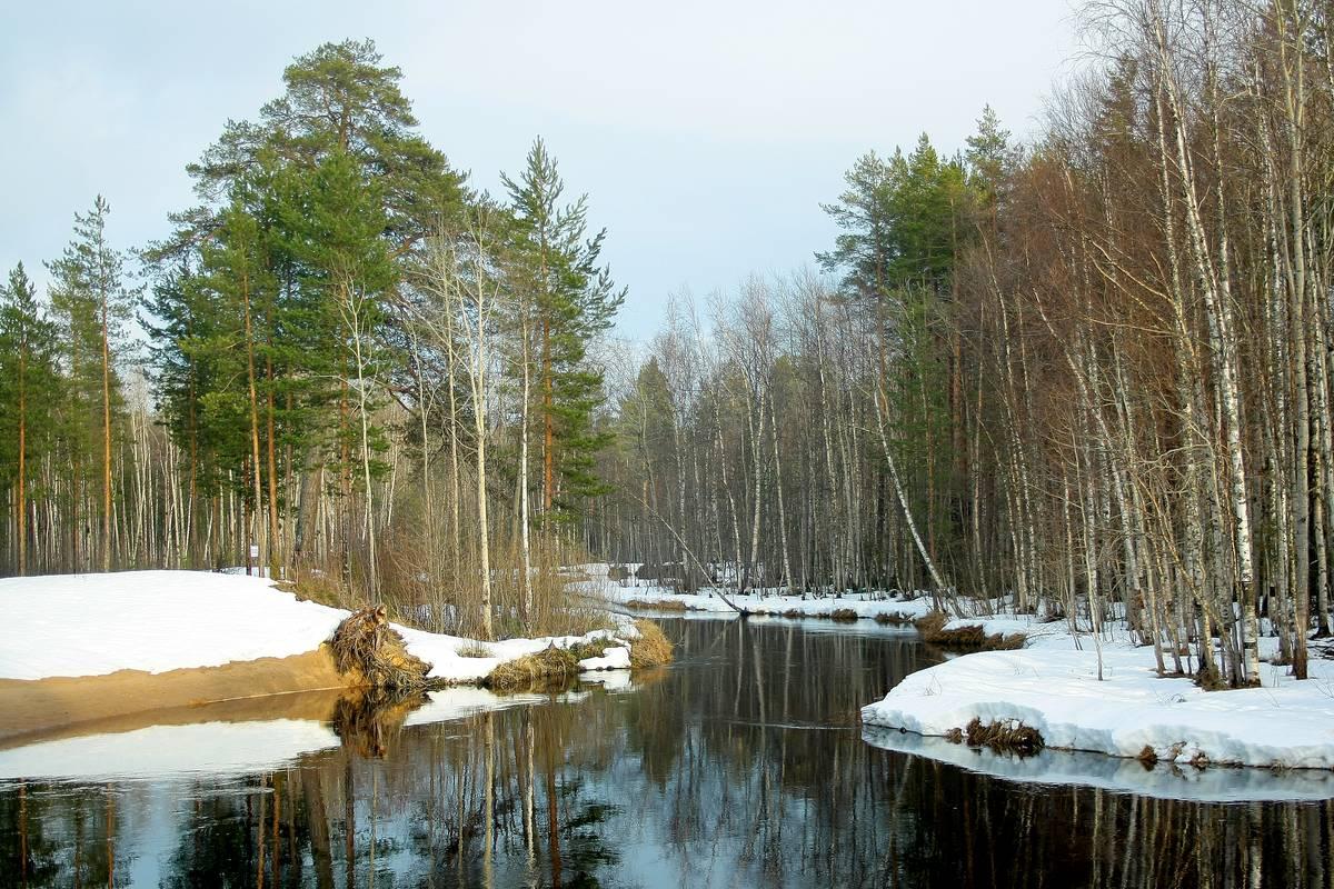 речка Нижняя Кудьма - весна 2015