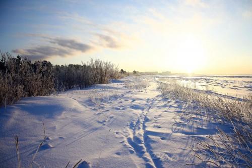 Берег белого моря - зима 2016