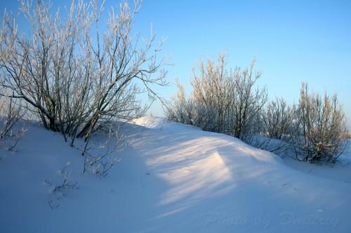 Дюны под снегом