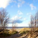 Дюны белого моря
