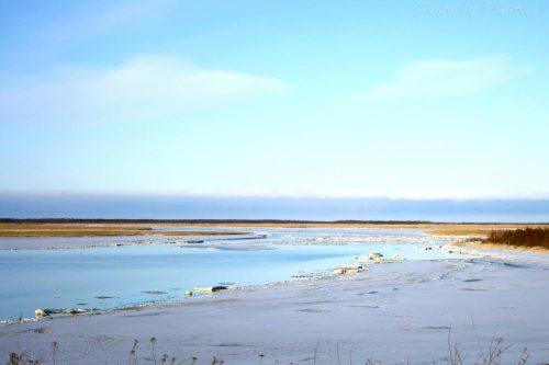Таяние льдов белого моря