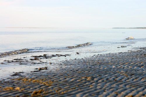 Волны песка. Ягры