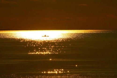 Солнечное плавание