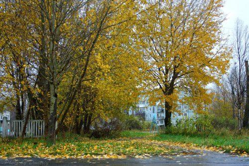 Осенний дворик на Яграх - осень 2018