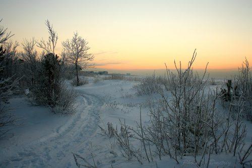 Тропа в снегах беломорских дюн
