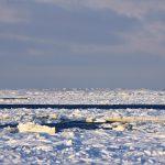 Лед и косы на Белом море