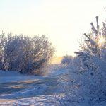 Короткий зимний день на севере