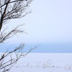 Весенняя погода белого моря